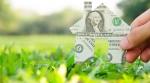 dollar bill house on grass